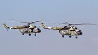 Mil  Mi-17-1(Sh) - 9926 -