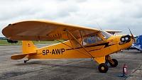 Piper J-3 Cub (L-4/NE) - SP-AWP -