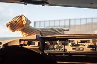 Boeing 737-8Q8 - OK-TVH -