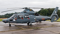 Eurocopter AS-365N-3 Dauphin 2 - 41 -