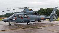 Eurocopter AS-365N-3 Dauphin 2 - 41 -